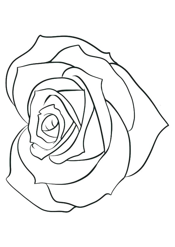 600x849 Rose Flower Coloring Pages Coloring Pages Of Roses Rose Flower