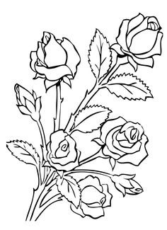 236x325 Roses Coloring Pages Awesome Coloring Pages Of Flowers Printable