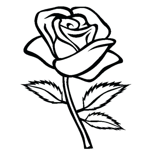 600x612 Coloring Page Rose Coloring Page Rose Rose Coloring Pages Great