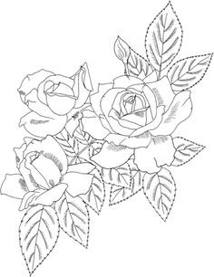 Rose Bush Coloring Pages