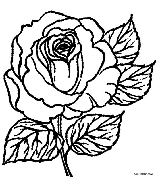 550x614 Coloring Pictures Of Roses