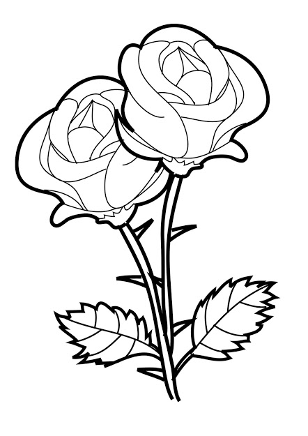 442x625 Top Beautiful Rose Coloring Pages Drawing