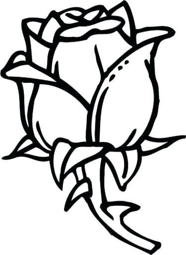 375x513 Coloring Pages Of Roses Rose Coloring Page Rose Coloring Page