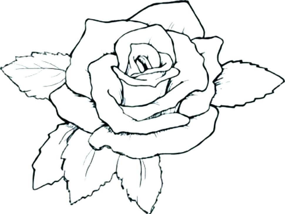 970x728 Coloring Pages Roses And Hearts Rose Coloring Book Together