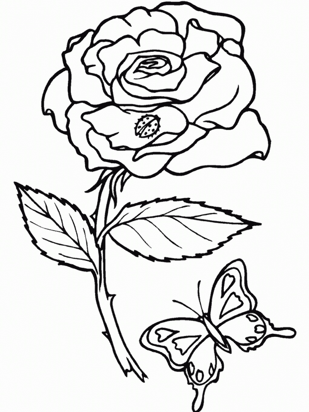 1020x1360 Majestic Design Ideas Rose Coloring Pages For Adults Easy Images