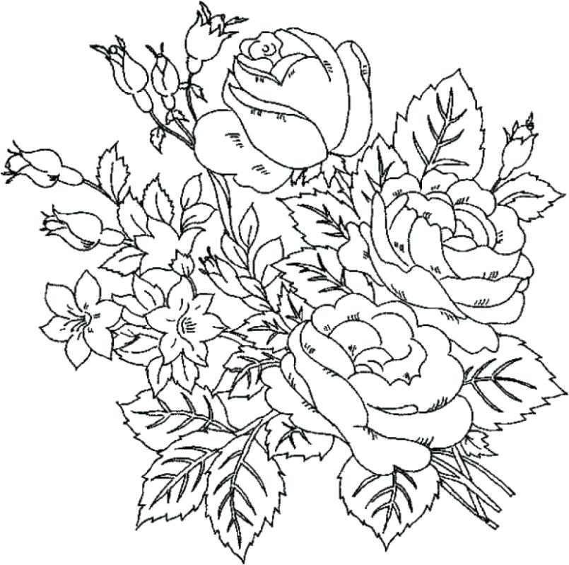 805x799 Rose Coloring Pages Printable Large Size Of Coloring Pages