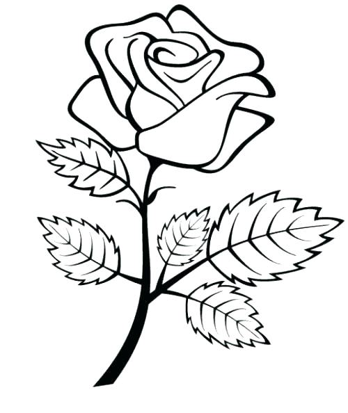 500x594 Coloring Pages Of Roses Coloring Pages Roses And Hearts Coloring