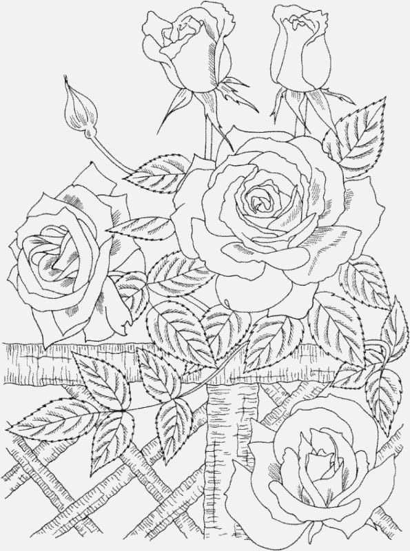 595x800 Coloring Pages Printable Amazing Coloring Pages Online To Print