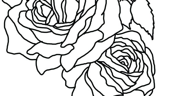 585x329 Coloring Pages Rose Coloring Book Flower Pages Two Roses Page Rose