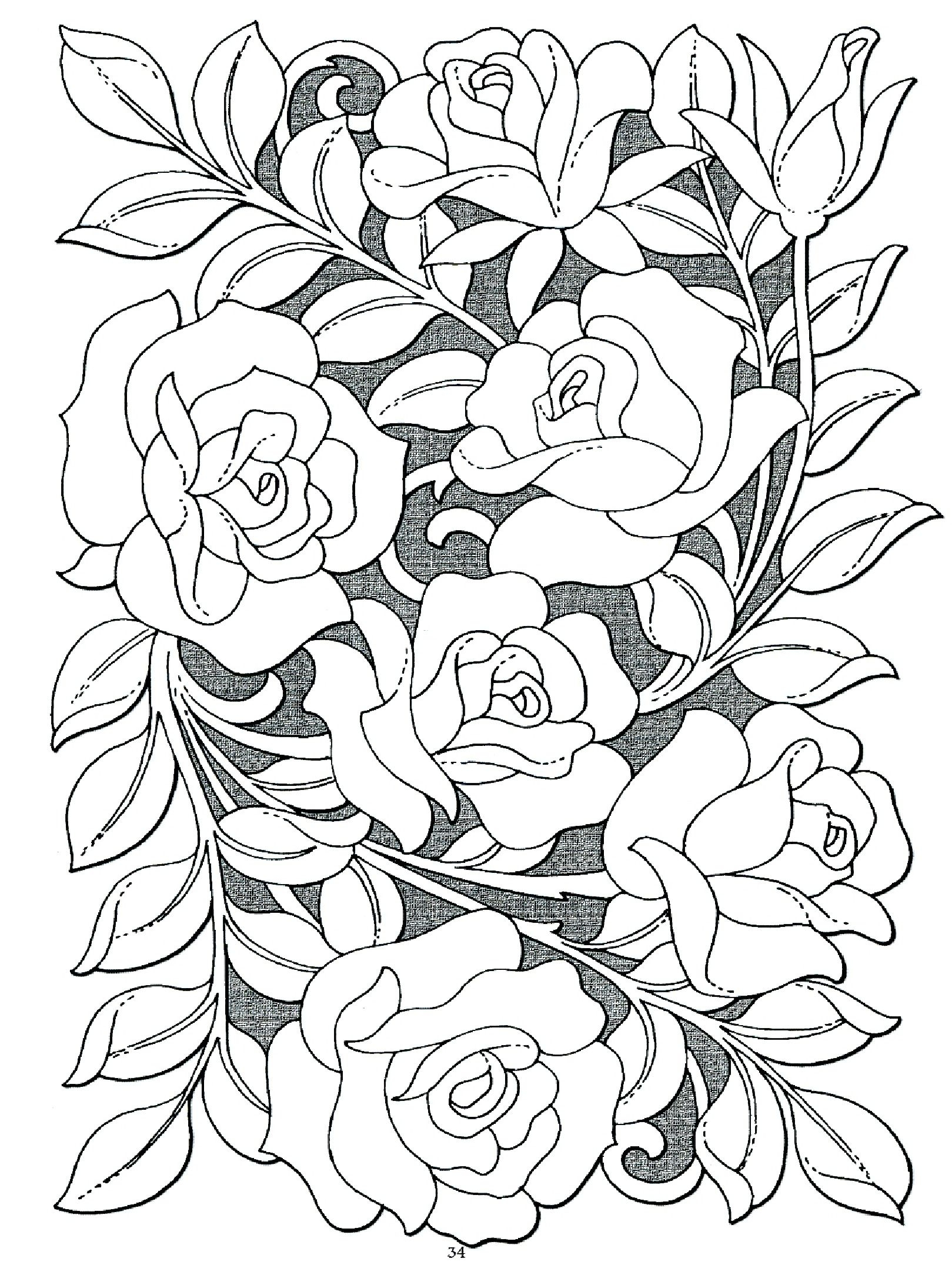 1619x2181 Generous Rose Garden Book Contemporary Garden And Landscape