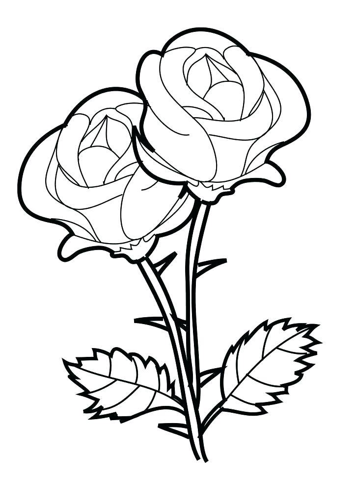 723x1024 Heart And Roses Coloring Pages Hearts Love Page Rose Garden Free