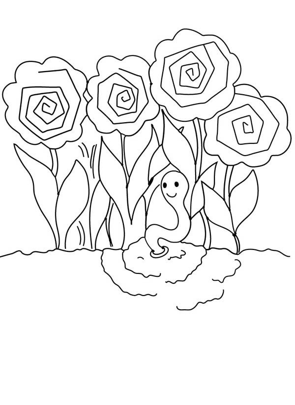 600x825 Peonies Roses Garden And Earthworm Coloring Pages Batch Coloring