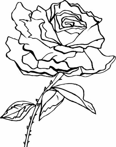 400x508 Coloring Blog For Kids Rose Flower Coloring Page Pictures