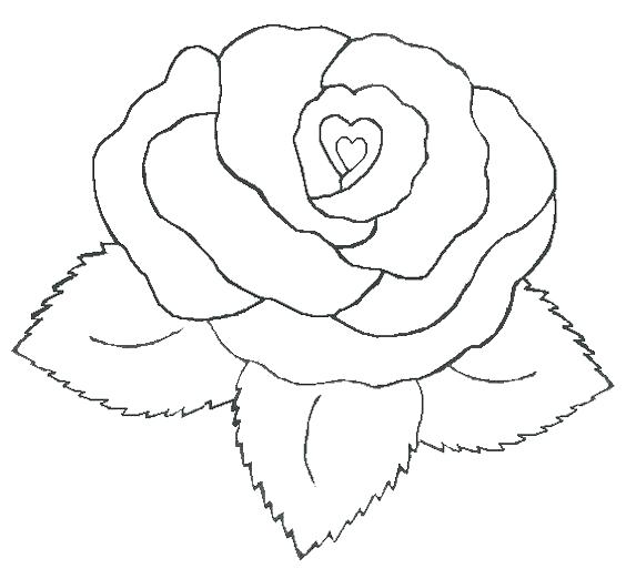 564x513 Roses And Hearts Coloring Pages Beautiful Rose Heart Valentine