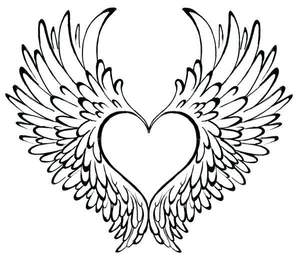 600x519 Coloring Page Heart Related Post Coloring Page Human Heart