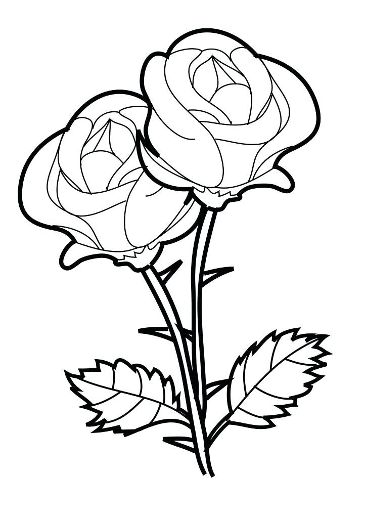 724x1024 Rose Coloring Pages Epic Rose Coloring Pages About Remodel
