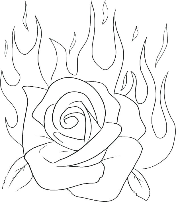 618x709 Rose Coloring Pages Flowers Beautiful Big Rose Coloring Pages Rose