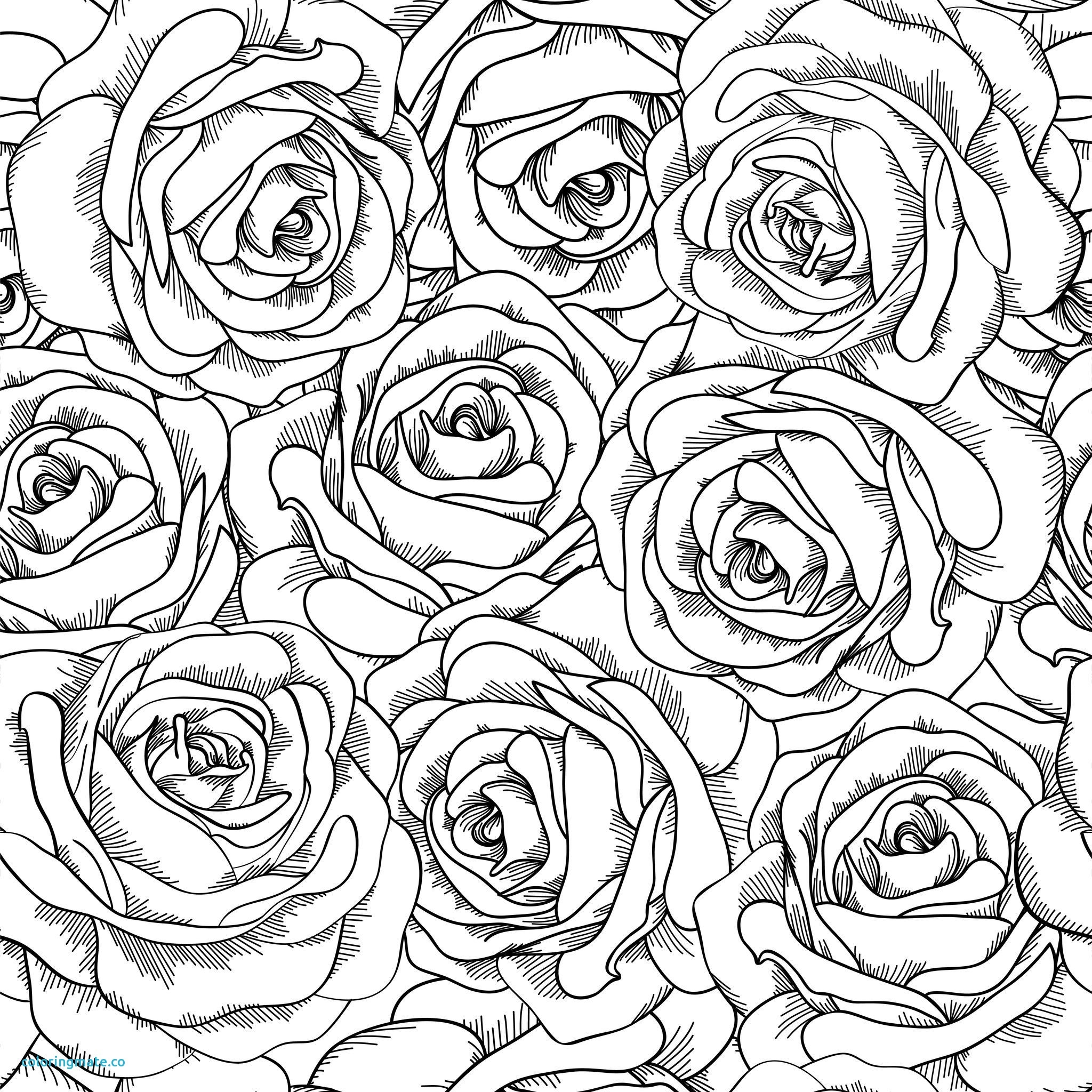 2048x2048 Best Of Rose Mandala Coloring Pages Collection Printable