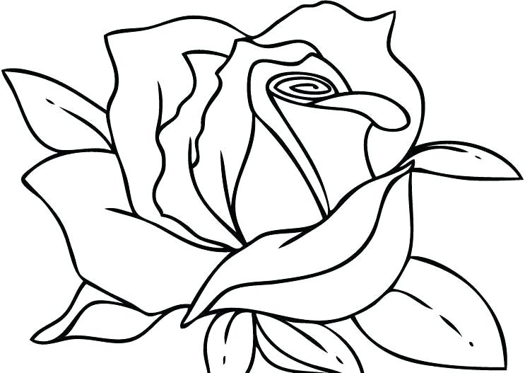 743x527 Pictures Of Roses To Color Printable Coloring Image Rose Heart