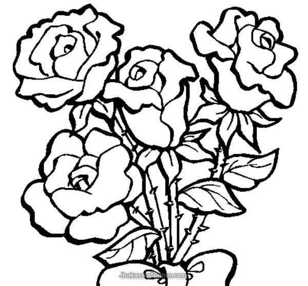 600x558 Roses Coloring Pages
