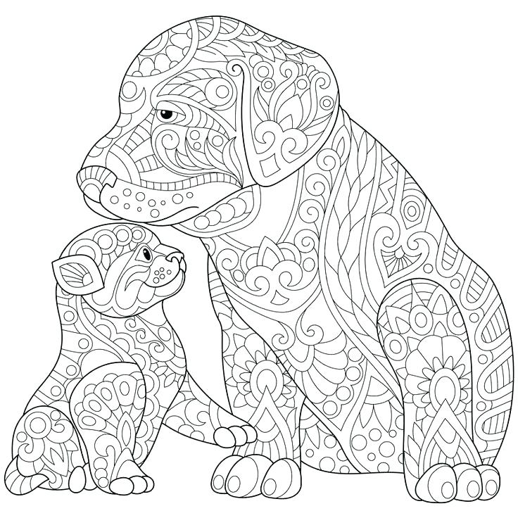 736x736 Rottweiler Coloring Pages Black Lab Coloring Pages Adult Coloring