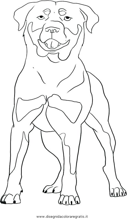 500x860 Rottweiler Coloring Pages Rottweiler Puppy Rottweiler Puppies