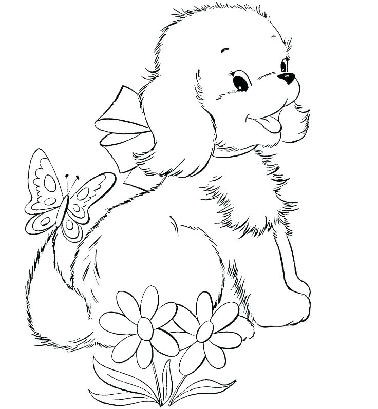736x797 Rottweiler Animal Coloring Pages Coloring Ideas Pro