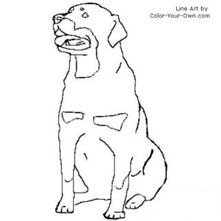 320x320 Rottweiler Coloring Page Inkspired Musings Let's All Go