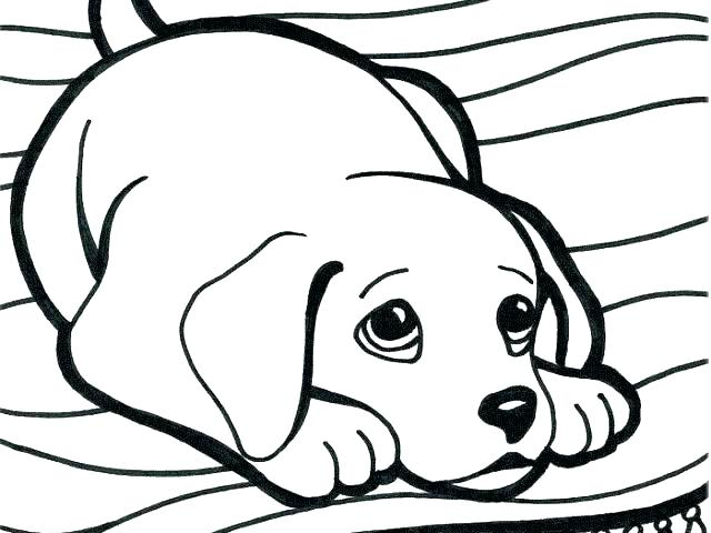 640x480 Beagle Coloring Pages Rottweiler Coloring Pages Awesome Rottweiler