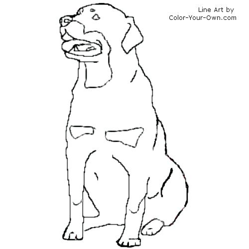 500x500 Dachshund Coloring Pages Coloring Free Coloring Dog With A Blog