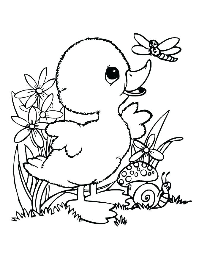 670x867 Rubber Duck Coloring Page Rubber Duck Coloring Page Printable