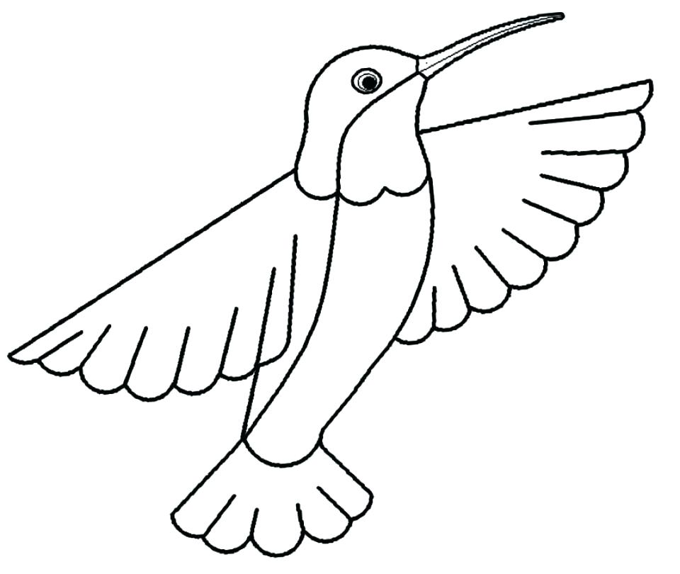Ruby Throated Hummingbird Coloring Pages