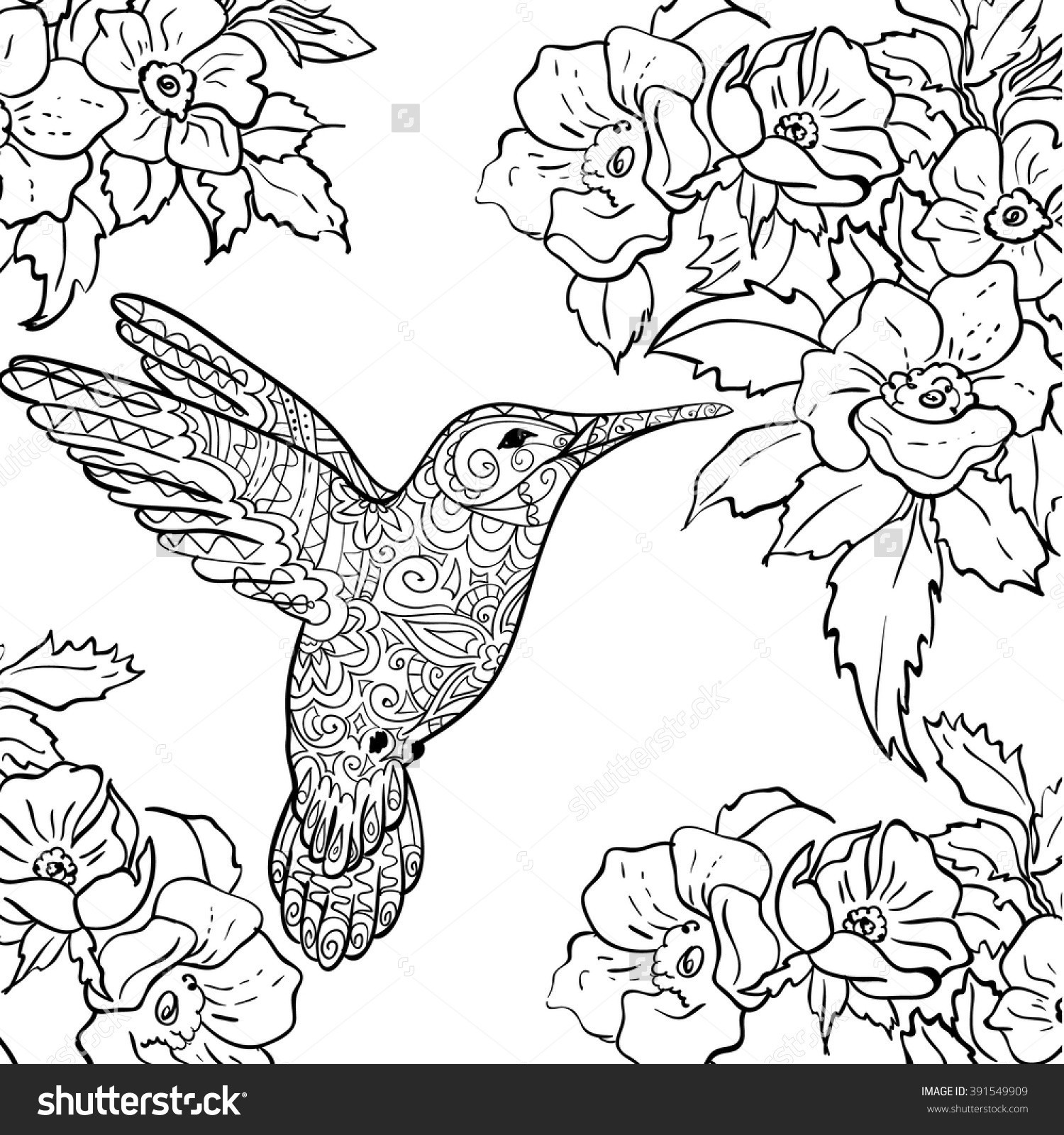 1500x1600 Hummingbird Coloring Page