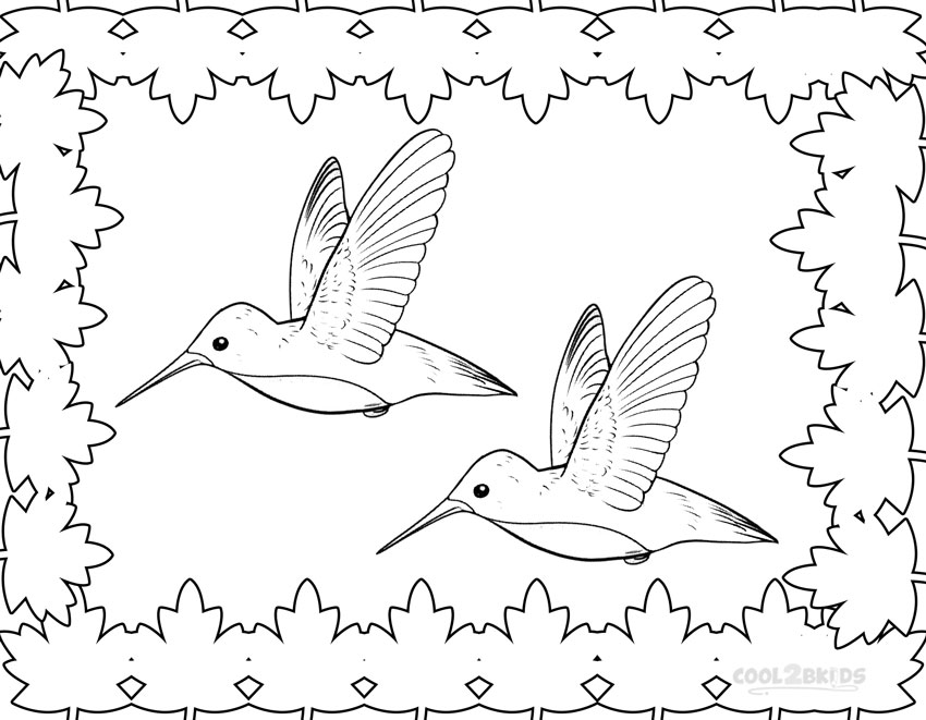 850x661 Printable Hummingbird Coloring Pages For Kids