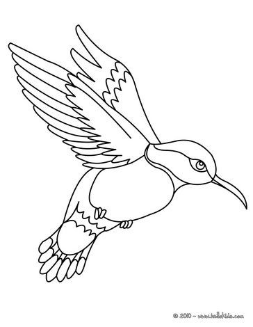 364x470 Birds Ruby Throated Hummingbird Bird Coloring Page
