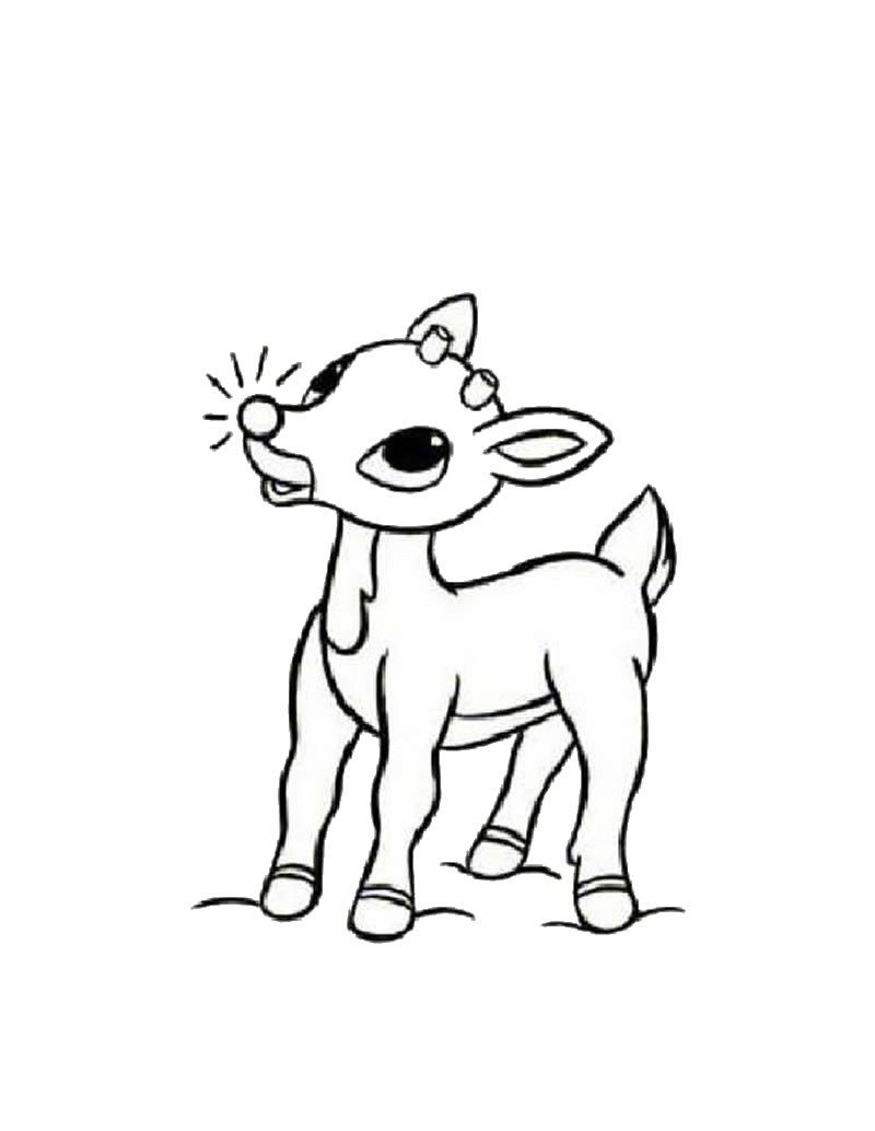 800x1034 Rudolph Reindeer Coloring Pages