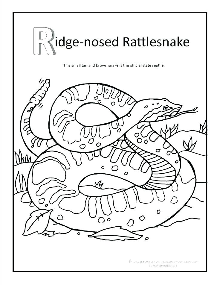 736x952 Amazing Navajo Coloring Pages Southwestern Native Coloring Page