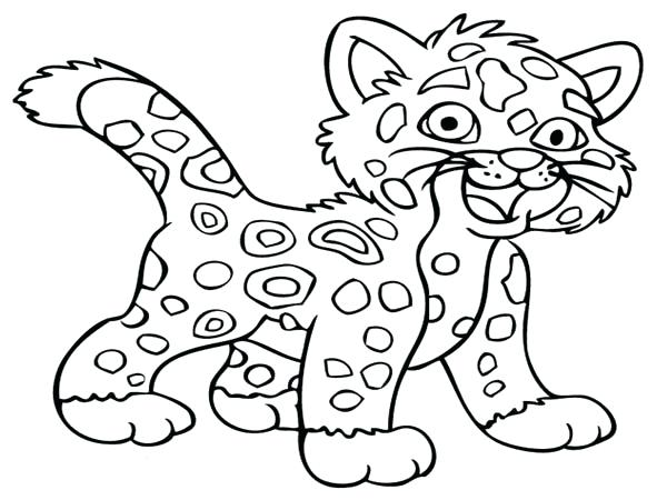 600x450 Cheetah Coloring Page Little Baby Cheetah Coloring Page Baby