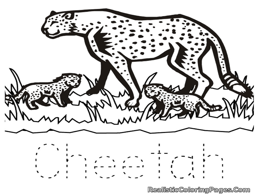 1024x768 Cheetah Coloring Page With Running Beautiful Pages