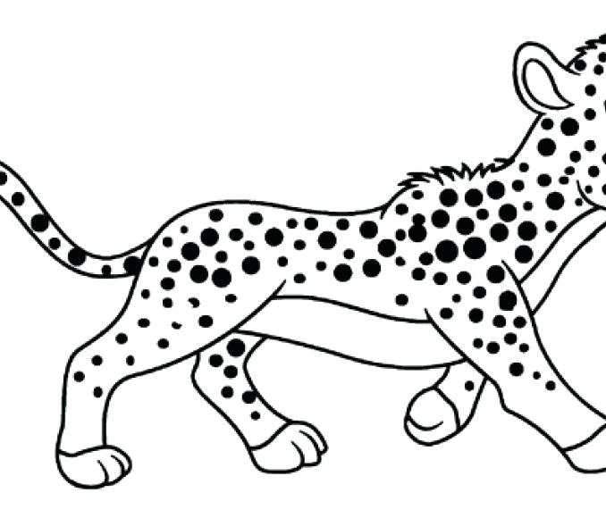 678x580 Cheetah Coloring Pages Drawn Cheetah Coloring Page Pin Pencil
