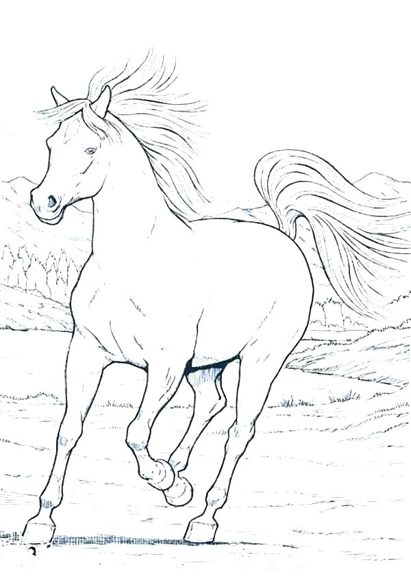 600x847 Coloring Pages Horses Running Modelo