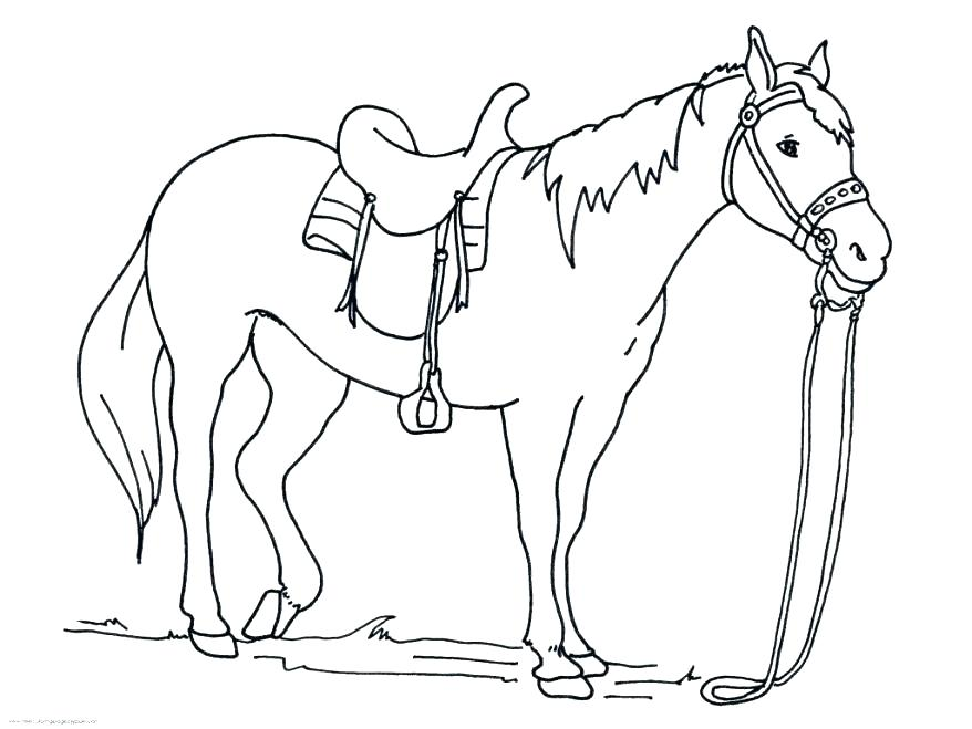878x659 Horse Head Coloring Page Running Horse Coloring Pages Horse