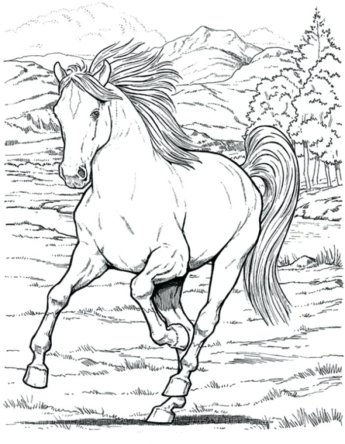 700x900 Realistic Horse Coloring Pages Running Horse Coloring Pages Adult