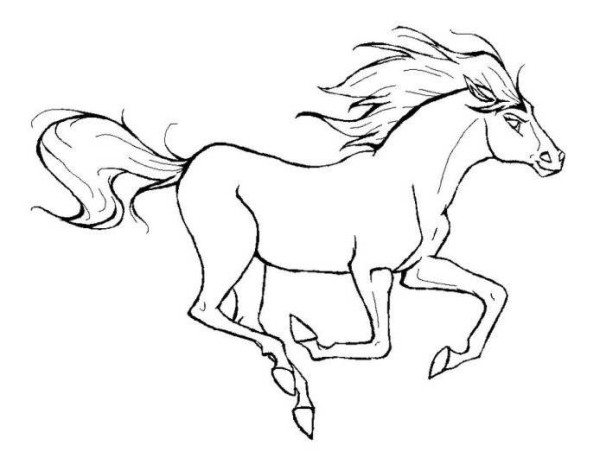 600x452 Running Horse Animal Coloring Page