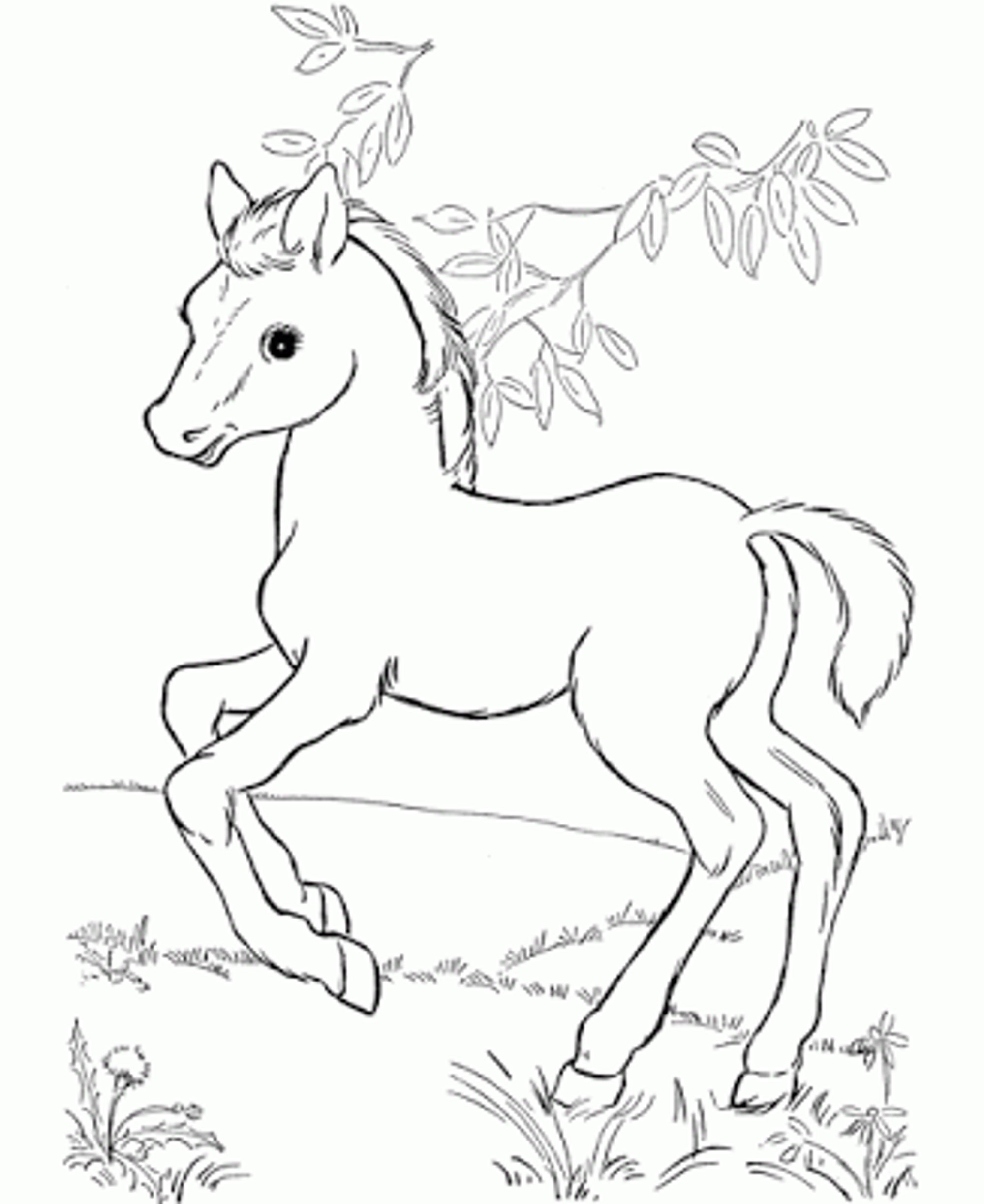 2000x2446 Running Horse Coloring Page Printable Pages Click The To View
