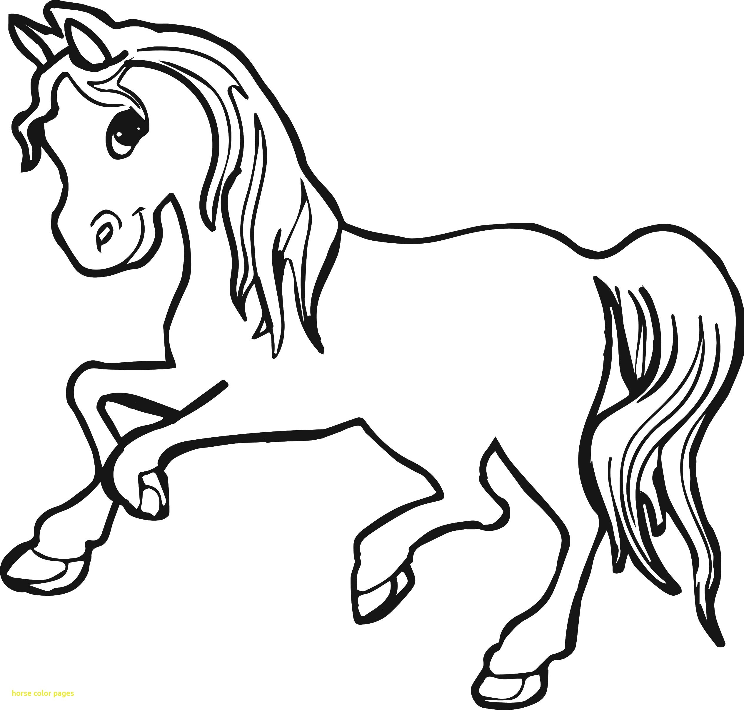 2530x2416 Best Horse Color Pages With Running Horse Coloring Pages