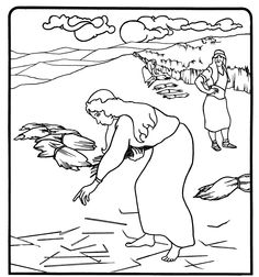 236x252 Image Result For Ruth And Boaz Coloring Sheets Bible