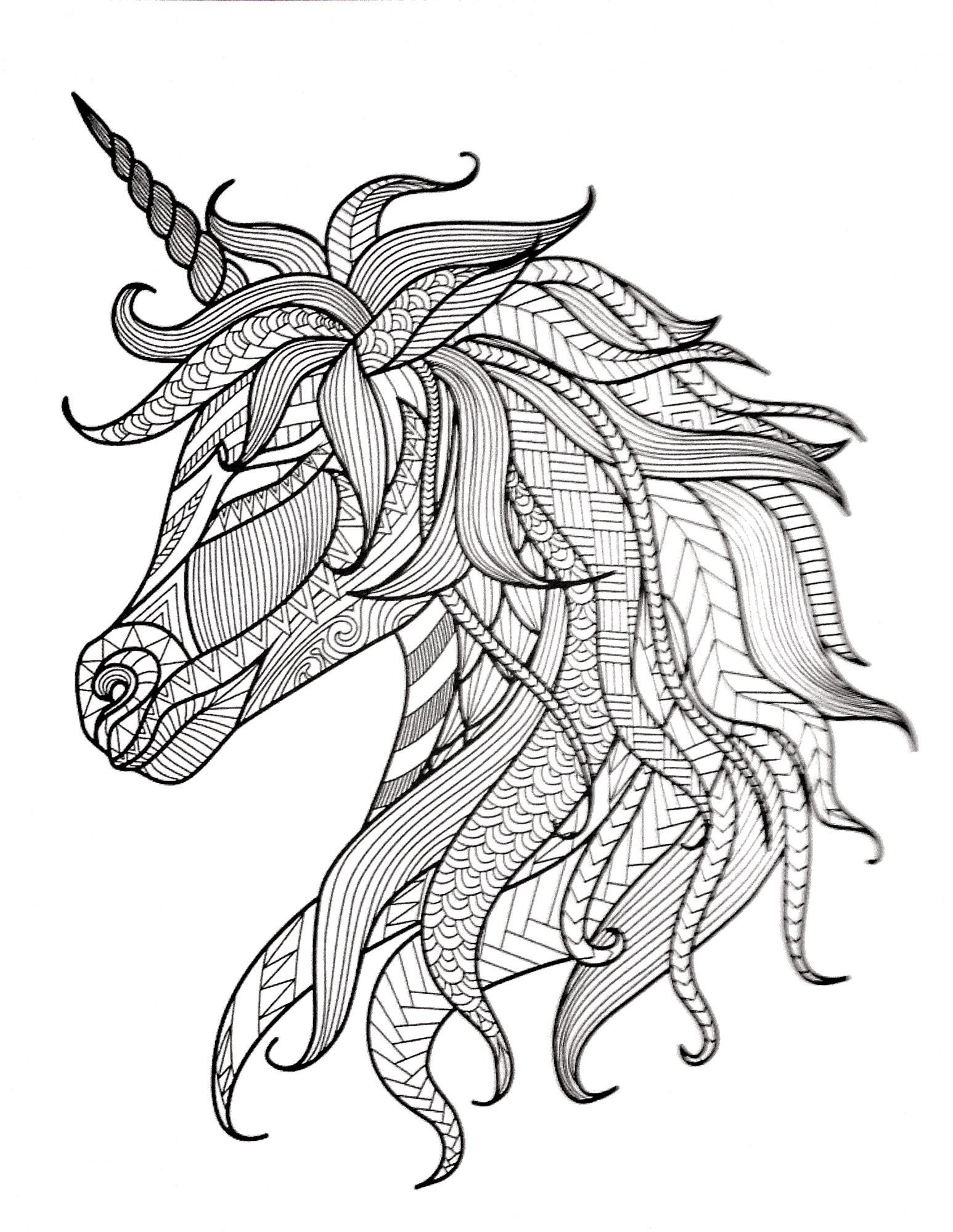 1546x2000 Fresh Saddle Coloring Pages Free Coloring Pages Download