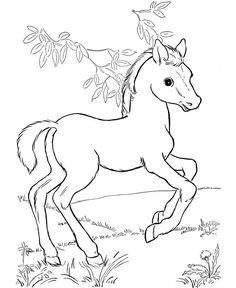 236x288 Horse