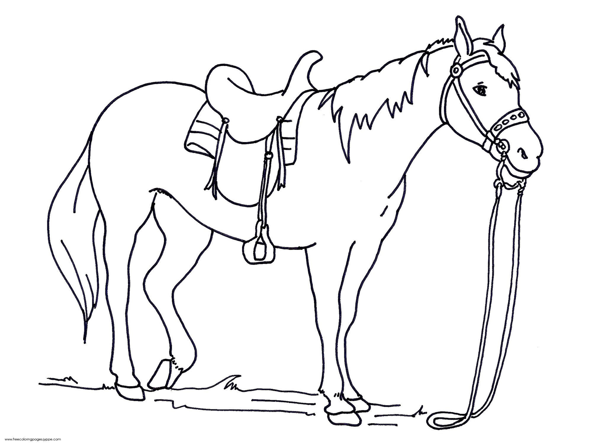 2000x1500 Horse And Saddle Coloring Pages